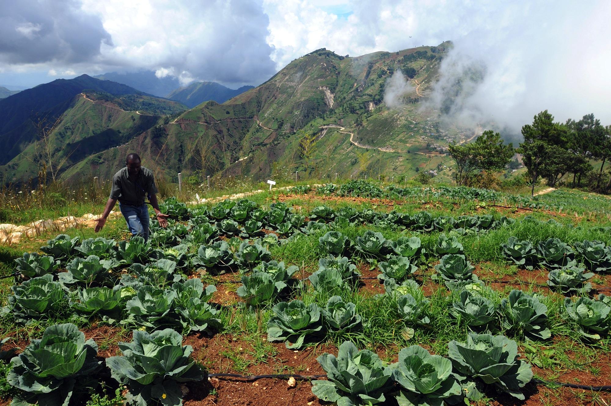 Transat présente de nouveaux forfaits vacances en Haïti