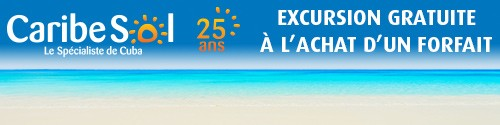 Caribe Sol - Standard Banner (Newsletter)
