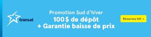 Transat - Standard banner (newsletter) - June 6