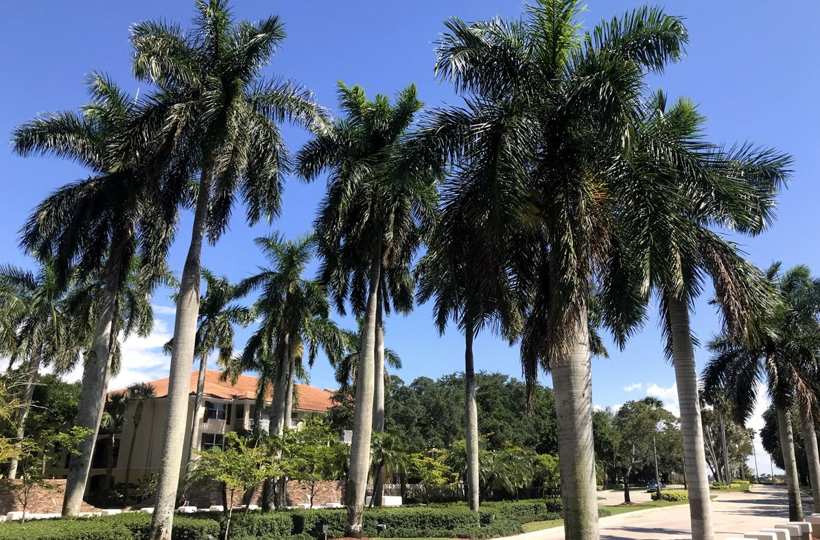 «Même si vous pensez connaître Fort Lauderdale, vous devez revenir car nous ajoutons toujours de nouvelles choses», a déclaré Gabriel E. Martinez du Bureau des congrès et des visiteurs du Grand Fort Lauderdale.