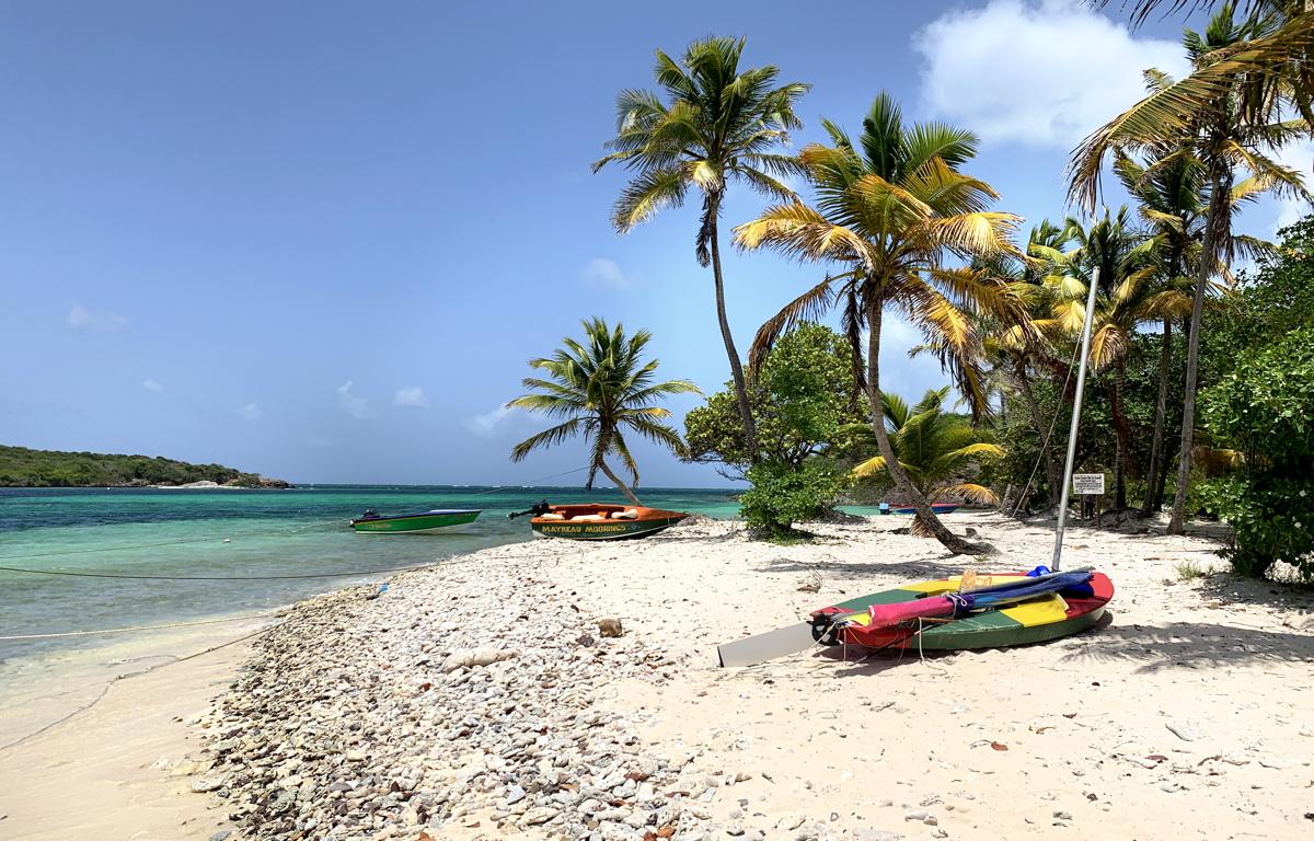 Saint-Vincent-et-les Grenadines a enregistré une augmentation de 7,4% du nombre d'arrivées au cours de la dernière saison hiver / printemps.