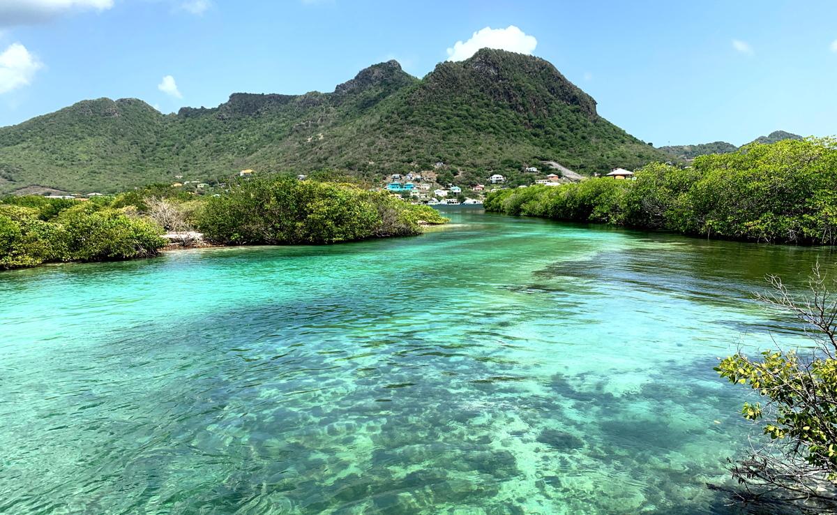 Ashton Lagoon Eco Trail, un projet de restauration de l'environnement mené par SusGren, sur l'île Union.