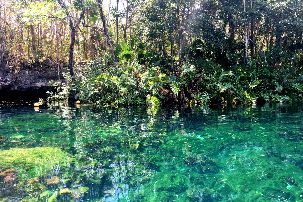 Unico 20º87º fournit aux invités qui visitent la communauté tankah maya un kit d'agrément contenant de la crème solaire biologique, afin qu'ils ne nuisent pas aux cenotes.