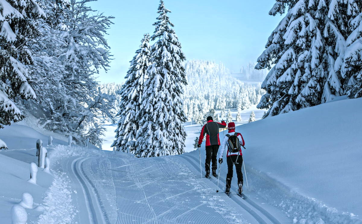 Cross-country skiing near Le Brassus, Parc Jura vaudois (Marcus Gyger)