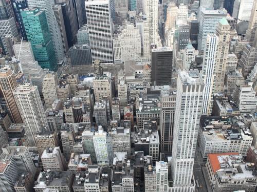 Hôtels de New York : offensive en vue contre les punaises de lit