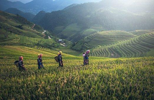 Laos - Cambodge avec Hanh Trra...