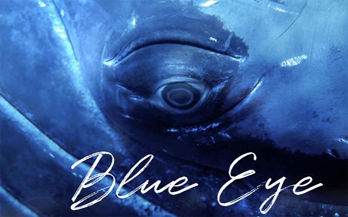 PONANT dévoile son Blue Eye, un salon qui permettra de voir sous l'eau en croisière