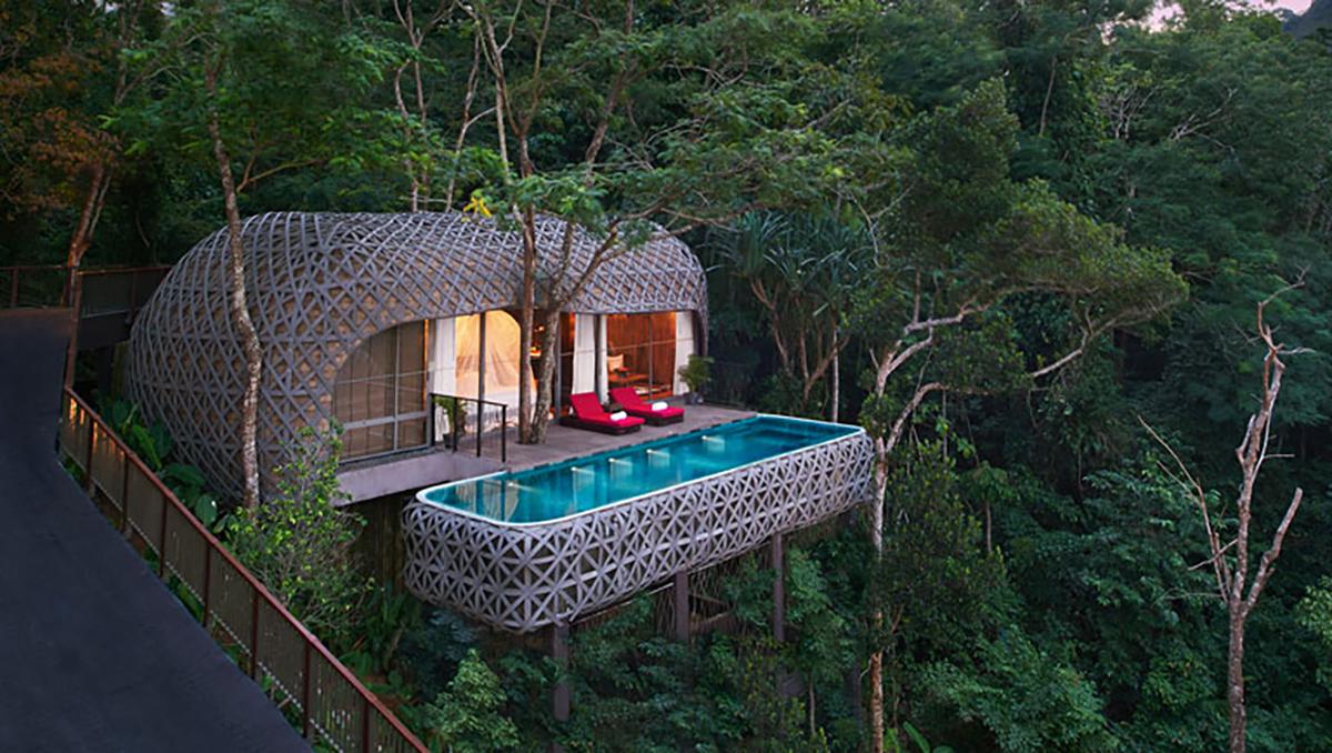 Vue d'en haut: l'intérêt des voyageurs pour dormir dans les arbres