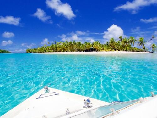 Les îles Cook créent l'un des plus grands sanctuaires marins au monde