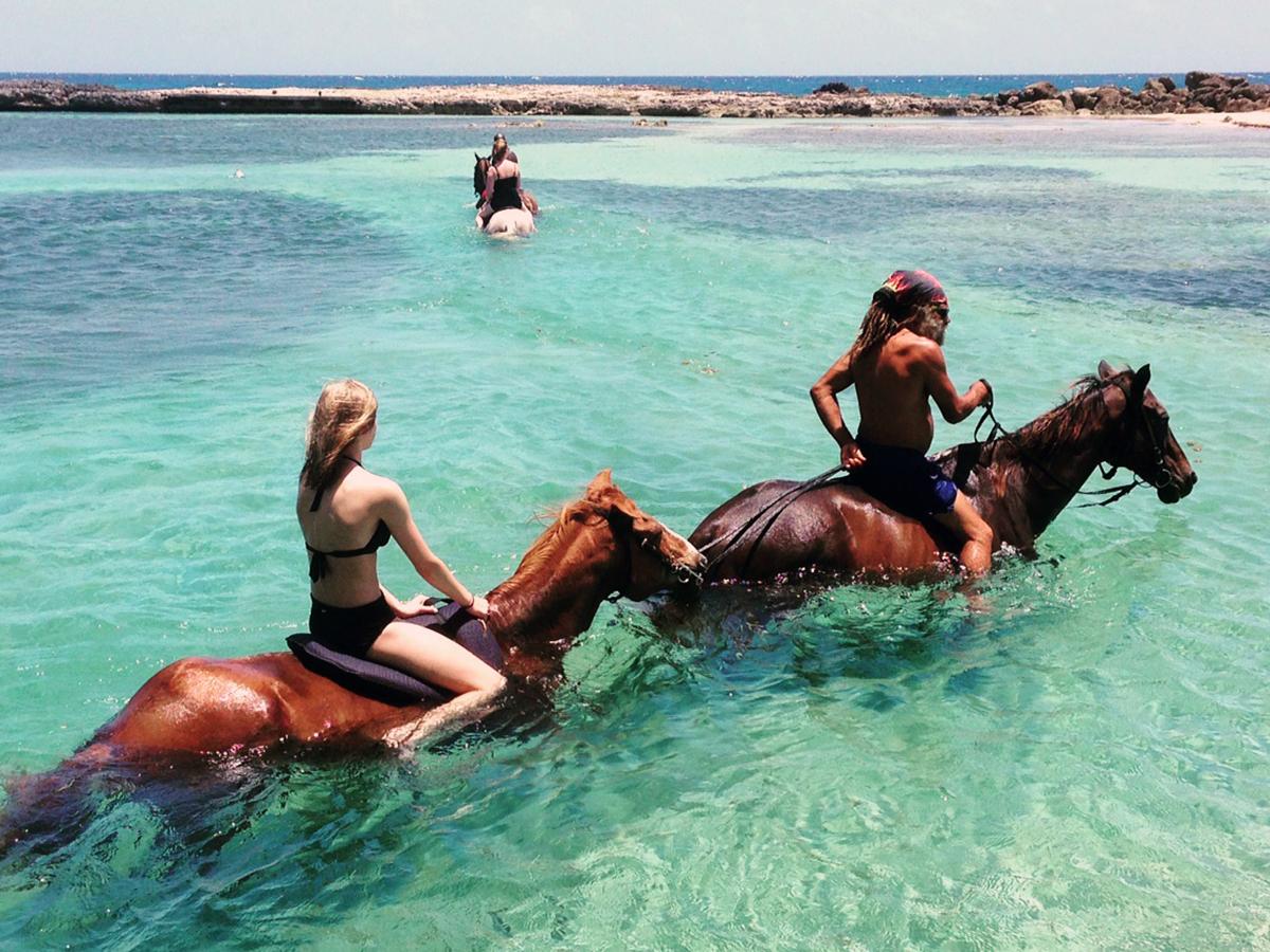 Une excursion à dos de cheval inoubliable