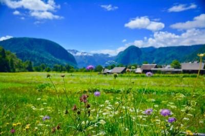 Les Alpes Juliennes ou Un paysage digne d'Heidi!