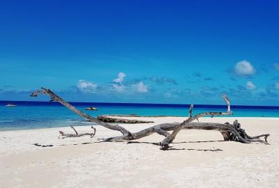 Playa Pesquero à la veille d'Irma