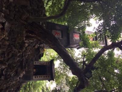 Méditation à Hanoi