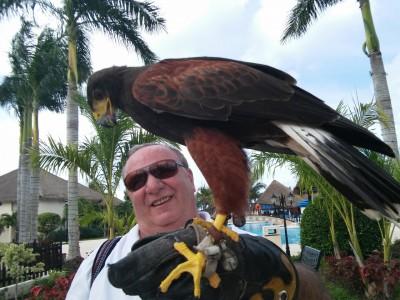 envole du vautour a cozumel