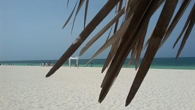 plage Pullman Cayo Coco