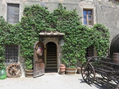 Un vignoble en Italie