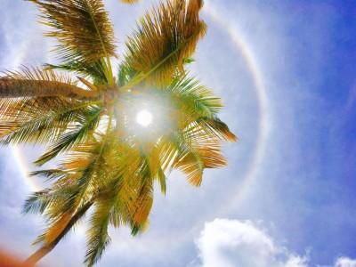 Sous le soleil de la Guadeloupe