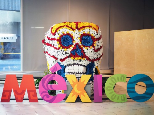 Dia de Muertos : une célèbre tradition mexicaine s'amène à Montréal