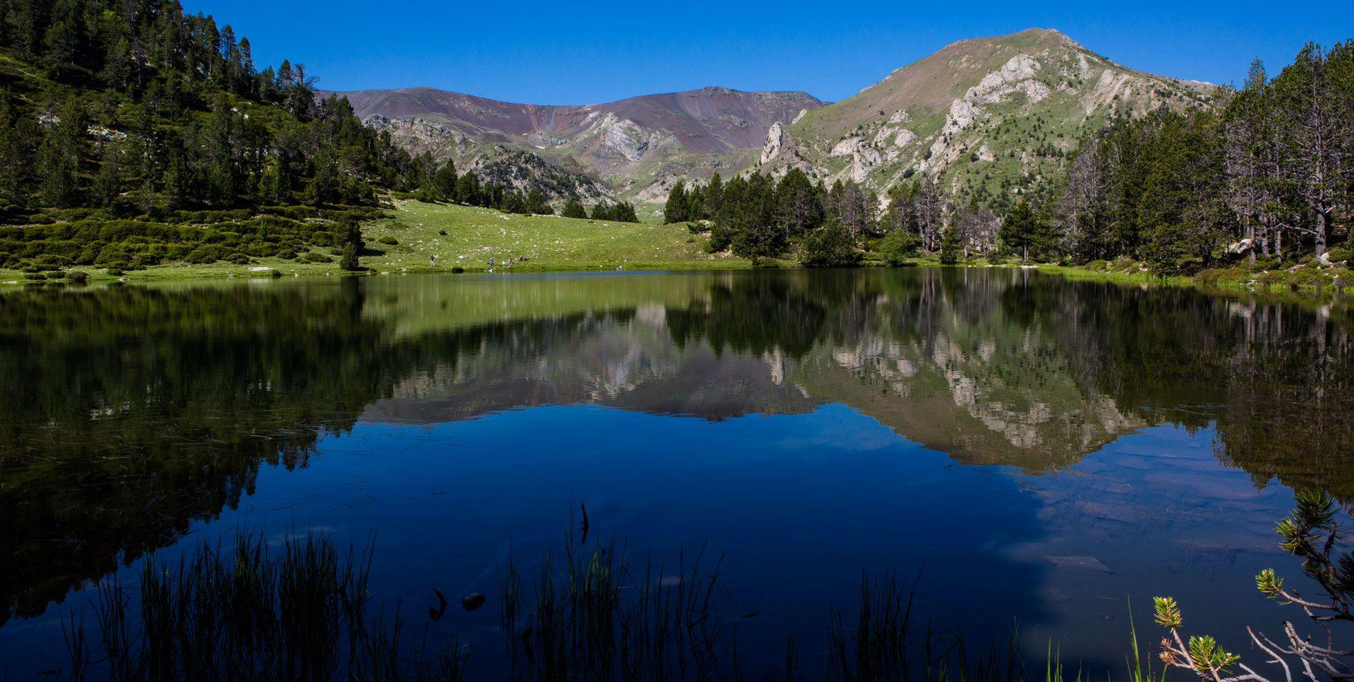 natura-summer-background.jpg