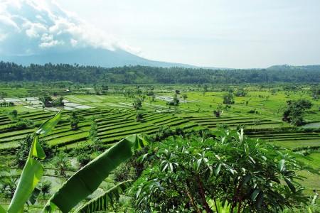 Volcan Agung : Bali en alerte maximale