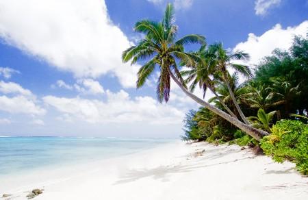 TravelBrands augmente ses commissions du Pacifique Sud à 15%