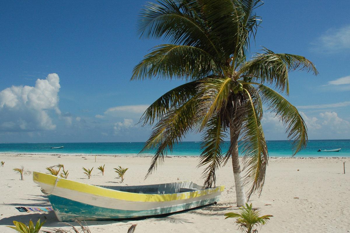 Club Med : nouveaux outils de vente pour les agents