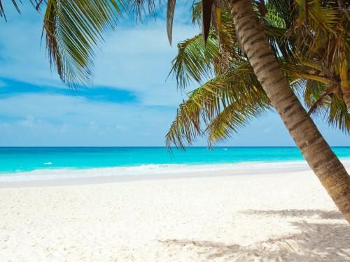 Jamaïque: affluence touristique en 2018