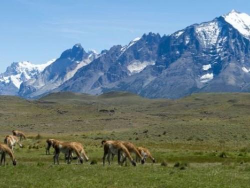 Le Chili inaugure un sentier de randonnée... de 2800 kilomètres!
