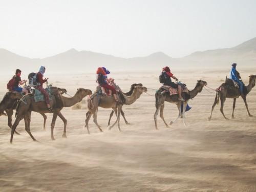 Vendre les circuits Intrepid au Maroc : quoi savoir