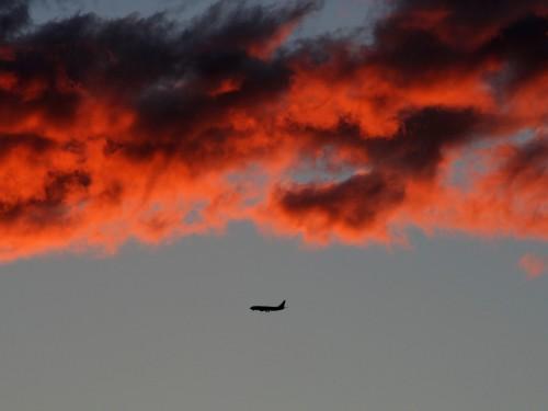 Environnement : sacrifier ses voyages en avion pour le climat?
