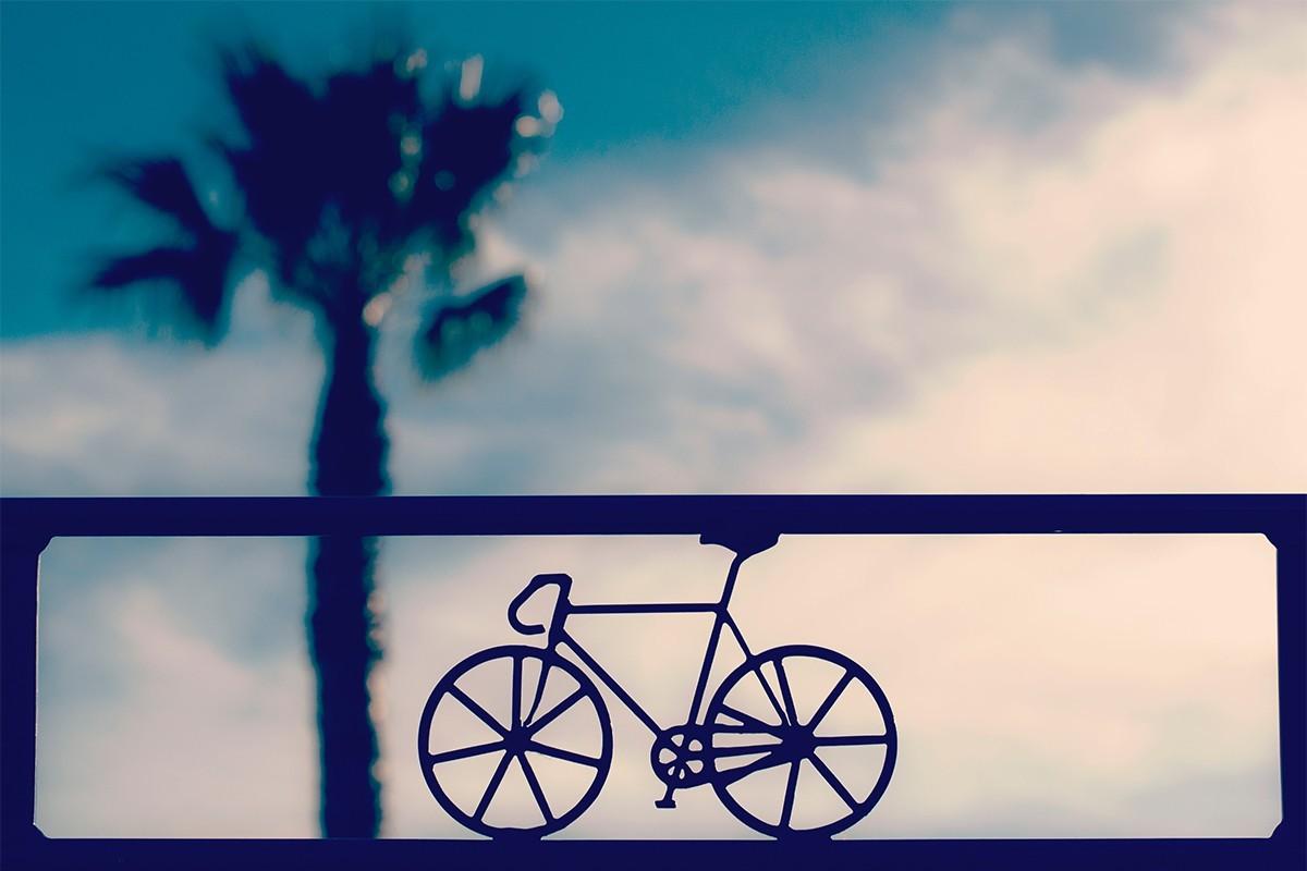 Voyager avec son vélo : tout ce qu'il faut savoir