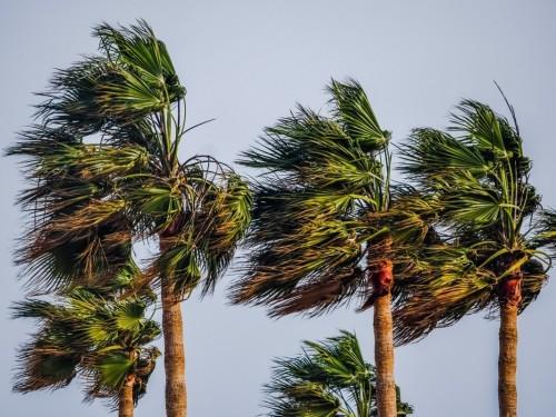 Vers une saison « normale » des ouragans dans l'Atlantique