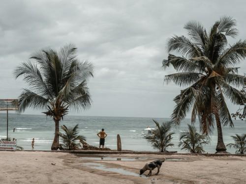 Dorian devient un ouragan majeur, les compagnies aériennes canadiennes réagissent