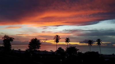 Soleil Antillais
