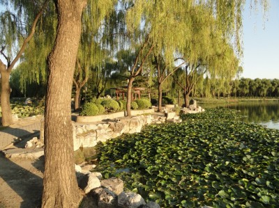 Le calme au coeur de Beijing