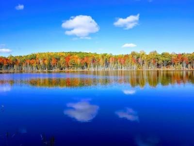 Reflets d'automne