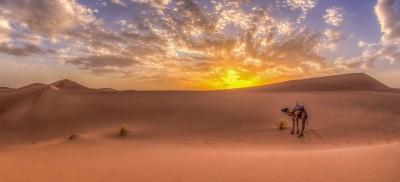 Coucher du soleil dans le Sahara