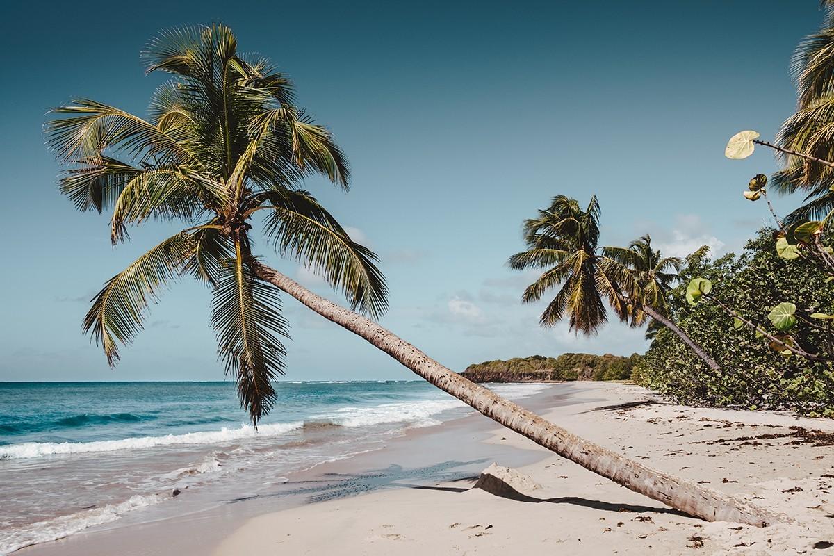 Martinique : plus de sièges au départ de Montréal cet hiver