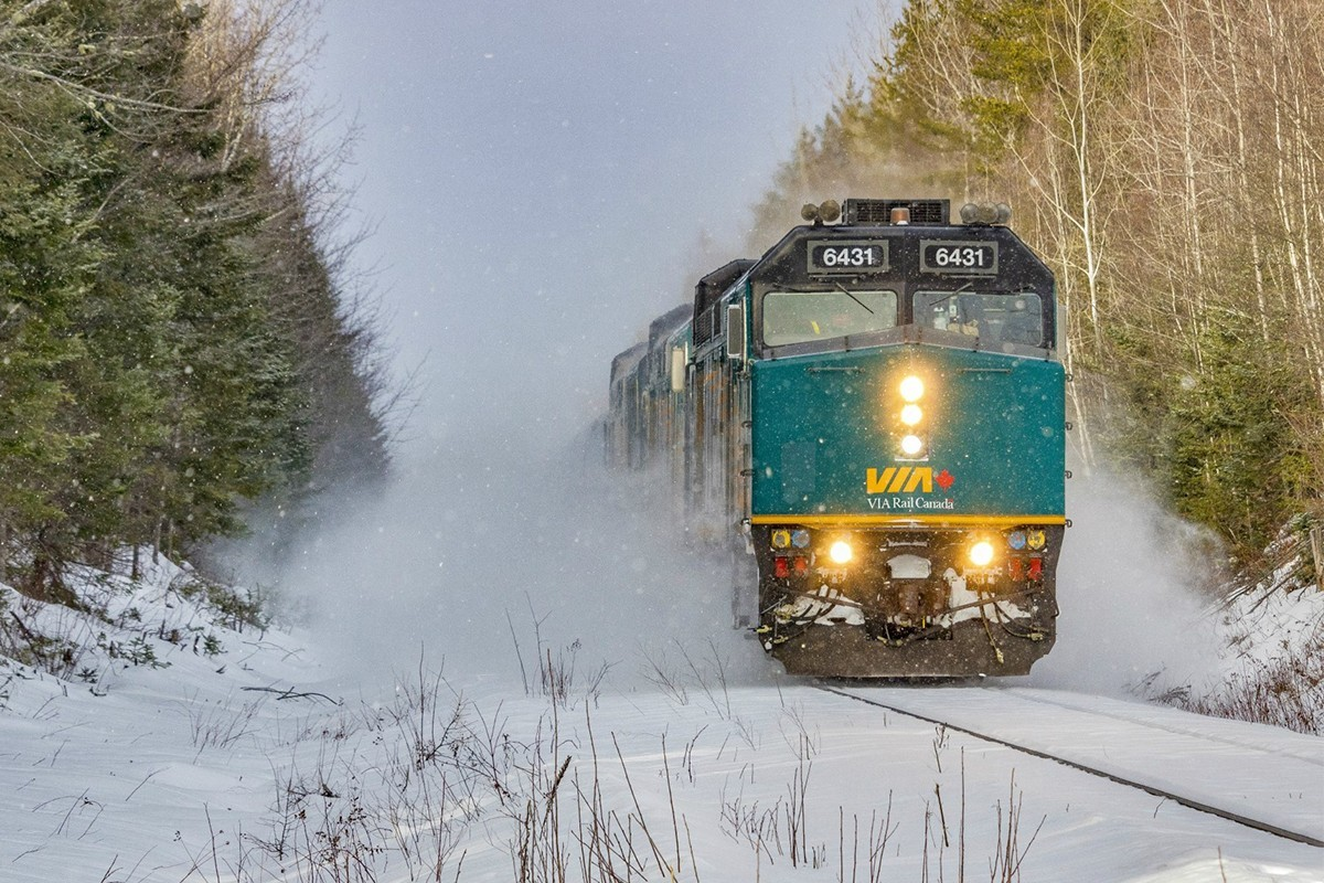 VIA Rail annule la plupart de ses services