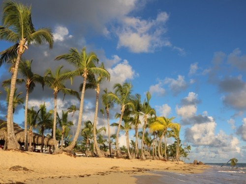La République dominicaine confirme son premier cas de COVID-19