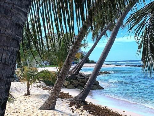 La Barbade rouvre aux Canadiens le 12 juillet. Ce que vous devez savoir avant de prendre l'avion