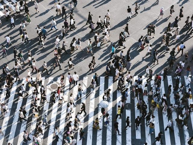 Le nombre de titulaires de permis et de CCV décline