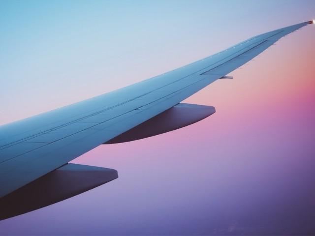 L'interdiction des voyages internationaux retarde la reprise