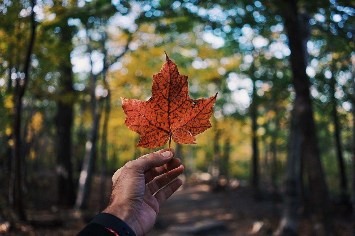 Voyages TravelBrands lance un programme de voyages personnalisés au Canada