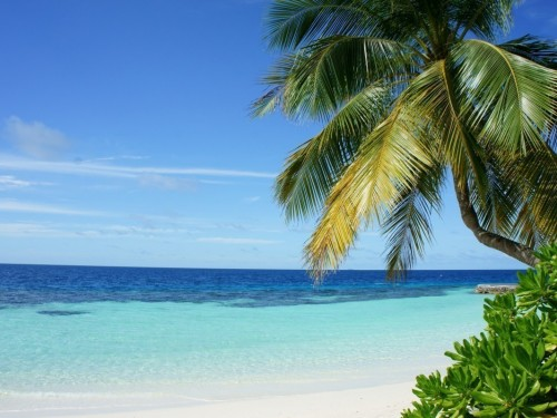 VAC relance les vacances à Cuba