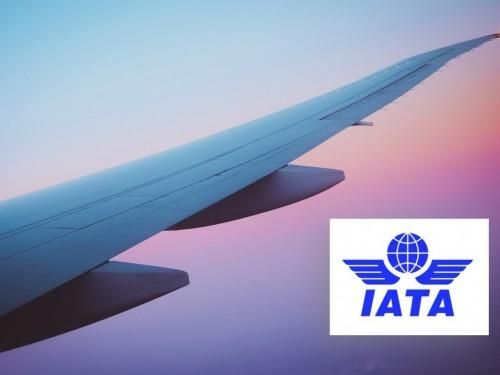 2020, la pire année de l'histoire pour la demande de voyages aériens