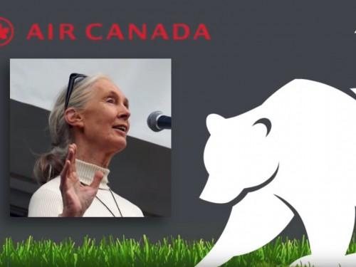 Air Canada sensibilise les gens au commerce illégal d'espèces sauvages