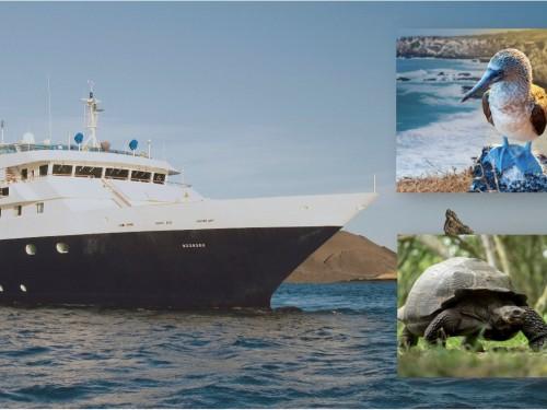 Celebrity reprend ses croisières d'été vers les îles Galápagos