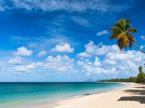 La Martinique ouvre de nouveau son ciel à Air Canada