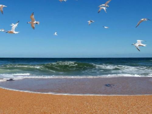 Sondage de CAA-Québec : 70% des snowbirds entendent partir cette année